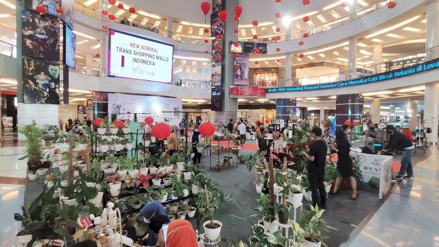 Lagi Kekinian, TSM Makassar Hadirkan Pameran Tanaman Hias