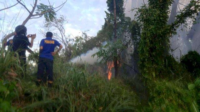 Kemarau Masih Terjadi, Taufan Pawe Imbau Warga Waspadai Bencana Kebakaran